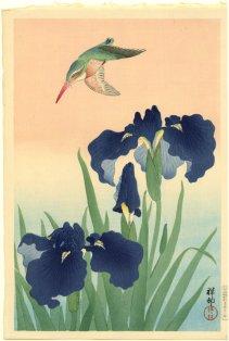 ohara koson, kingfisher in flight above flowering irisses 1926