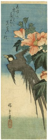Utagawa Hiroshige, Long-tailed bird and hibiscus 1830-1844